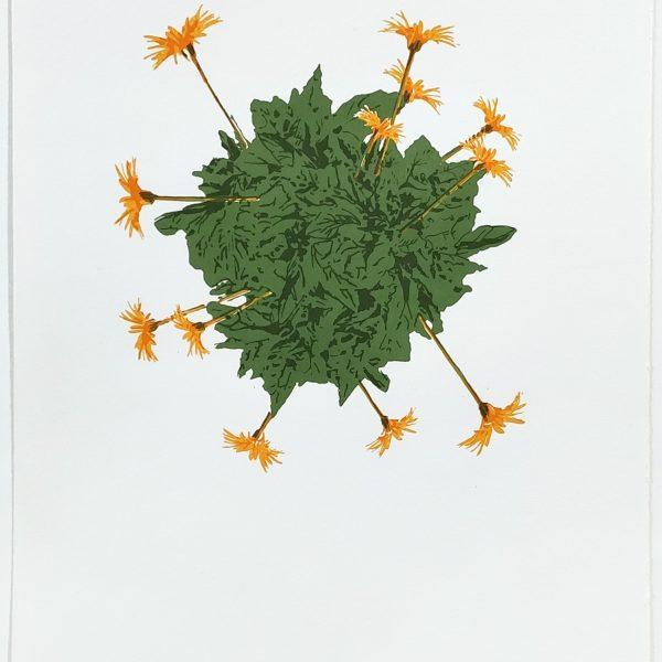 Blooming Marvellous II